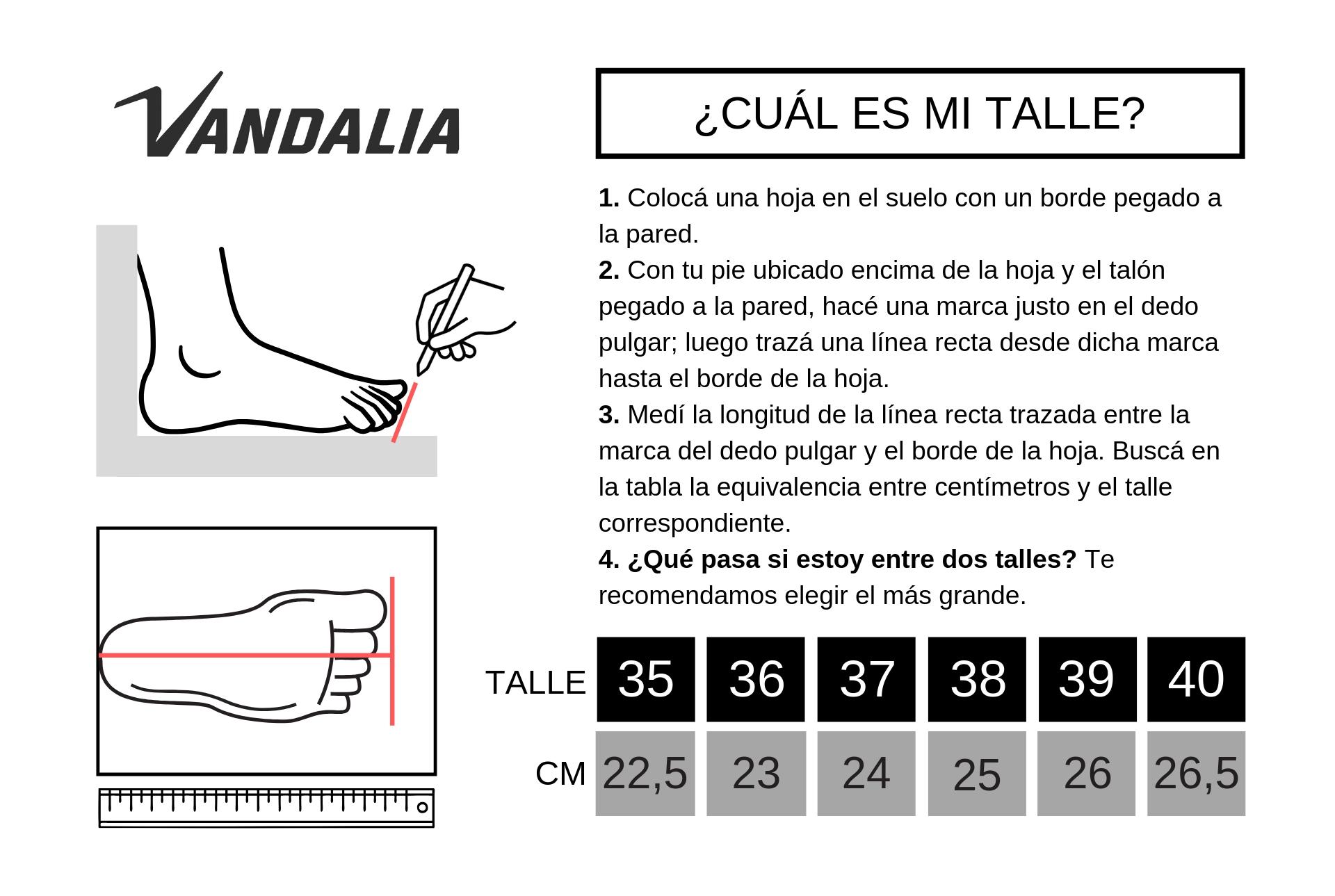 Tabla de talles Vandalia